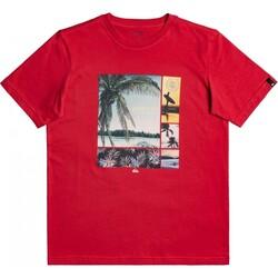Quiksilver - Quiksilver Eqbzt04321 Hidden Cove Ss Yth Erkek Çocuk T-Shirt (Thumbnail - )